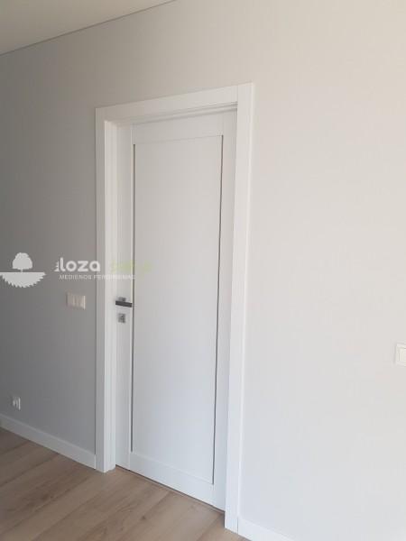 durys L-02 baltos spalvos